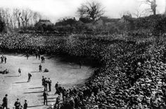This was the scene at Crystal Palace when Newcastle United first played in the F. Note the spectators perched on trees and rooftops. Part of the vast crowd of that watched United's first FA Cup final in Newcastle United Football, Crystal Palace Fc, Aston Villa Fc, British Football, Paisley Scotland, Fa Cup Final, Sheffield United, The Spectator, Tottenham Hotspur