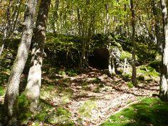 ...vorbei an moosbedeckten Felsen/Höhlen...