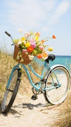 Birthday wishes picture with aqua colored bike, basket of flowers near water. The post Birthday wishes picture with aqua colored bike, basket of flowers near water. appeared first on Trendy.