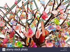 candy tree - Google Search