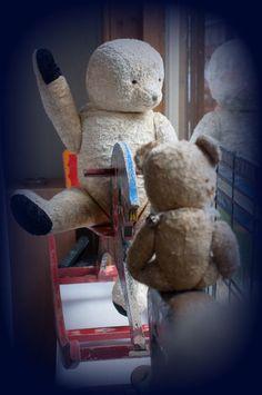 bears Kom Achterom