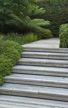Decked steps with shadowgap and hebe edging