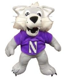 1000 Images About Northwestern Wildcats On Pinterest