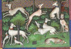 Titre :  Gaston Phébus, Livre de la chasse. — Gace de la Buigne, Déduits de la chasse.  Date d'édition :  1301-1500  Français 616  Folio 46v