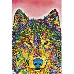"Zipcode Design Wolf I Graphic Art on Wrapped Canvas Size: 60"" H x 40"" W x 1.5"" D"