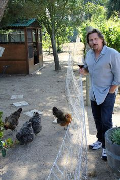 Emilio Estevez with his chickens I was watching the Charlie Rose show on PBS today with actor father and son Martin Sheen and Emilio Es. Backyard Poultry, Backyard Farming, Chickens Backyard, Charlie Rose Show, Emilio Estevez, Homestead Farm, Urban Farmer, Urban Agriculture, Mini Farm