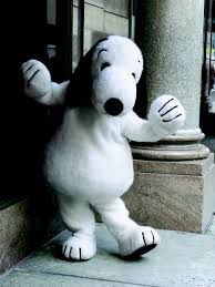 Image result for snoopy,costume character