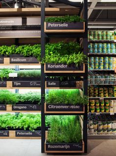 Help Yourself Herb Garden Indoor Farming, Vegetable Shop, Herb Shop, Herb Garden In Kitchen, Organic Market, Fruit Shop, Vertical Farming, Retail Store Design, Garden Shop