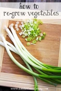 How to Re-Grow Vegetables. Save Money on produce by re-growing what you've already bought!