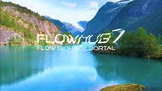 Flow State, Blog Categories, Workplace, Portal, How To Become, Training, World, Life, Instagram