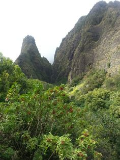Iao Needle Maui, HI-been there, very pretty! Hawaii Vacation Rentals, Vacation Deals, Us Travel, Places To Travel, Places To Visit, Visit Hawaii, Maui Hawaii, Monument Valley, Places Ive Been