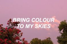 happy little pill // troye sivan