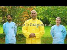 Mind Enterprises - Idealistic (Official Video)