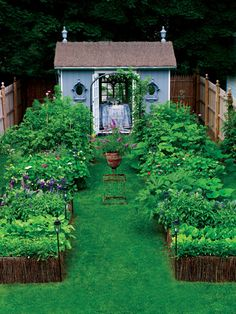 Grow Food, Not Lawns -- Here's a step by step for turning your lawn into a thriving vegetable garden. This simple write up comes with four methods to getting rid of the grass, a seed starting chart, and low maintenance crops. It even suggests some different techniques for you to implement in your new garden paradise: - lasagna gardening - square foot gardening - SPIN gardening (small plot intensive) - biointensive gardening - no till / no dig gardening