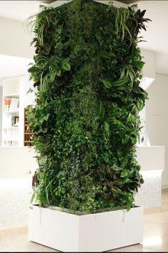 Vertikální zahrady Ortisgreen