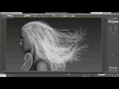 V Ray 3 0 Preview Hair Rendering Optimizations - YouTube