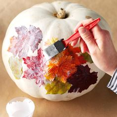 Fall Showcase on Pumpkins decopage leaf on pumpkin More from my site The 11 Best DIY Fall Centerpieces Cozy And Comfy Fall Kitchen Decor Ideas Patterned Pumpkin Roll 3 Easy Hedgehog Crafts for Kids Leaf Painting Fun Fall Crafts to Make With Your Kids Easy Pumpkin Carving, No Carve Pumpkin Decorating, Autumn Decorating, Diy Pumpkin, Fall Pumpkin Crafts, Pumpkin Family, Pumpkin Painting, Green Pumpkin, Fall Pumpkins