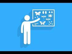 Complex Adaptive Systems: 6 Schemata - YouTube