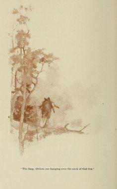 Wild life near home. - Biodiversity Heritage Library