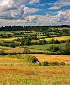 Northamptonshire - I just love these beautiful pictures of my beloved county : ) x