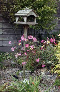 8 Easy Ways To Landscape Under Bird Feeders Gardening It S For The