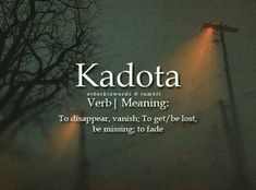 Kadota (verb) To disappear, vanish. To get / be lost, be missing; to fade - The Words, Fancy Words, Weird Words, Pretty Words, Beautiful Words, Cool Words, Unusual Words, Unique Words, Foreign Words