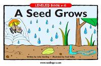 Plant Unit Ideas