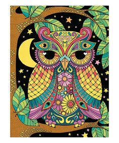 Take a look at this Night Owl Color-by-Number Set today!
