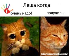 Many faces of Alexey