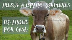 10 Frases hispano-germanas de andar por casa Home, First Language, Switzerland