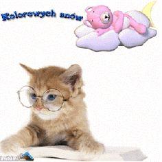 Animowane obrazki i gify na dobranoc: Animowane i gify na dobranoc kotki i pieski Lauren Wood, Good Night Sweet Dreams, Cute Cats, Teddy Bear, Animals, Unicorn, Friends, Google, Blog