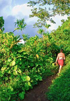 Hiker on the lush Kalalau Trail on the Na Pali Coast, Island of Kauai, Hawaii