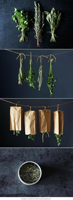DIY - How to dry your herbs - you need herbs for soups to reduce fat and salt. Summer is coming and buy fresh herbs at your local Farmer's Markets. Growing Herbs, Plantation, Hydroponics, Hydroponic Gardening, Herbal Remedies, Natural Remedies, Gardening Tips, Organic Gardening, Vegetable Gardening