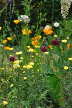 Garden design and landscaping in Berkshire | Arthur Road Landscapes