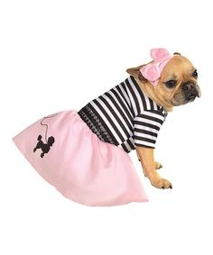 Look at this Sock Hop Pet Costume on #zulily today!