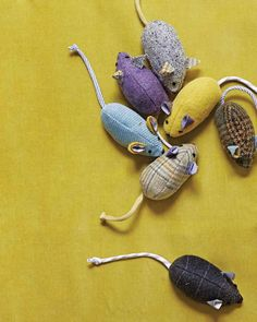 Menswear Mouse Toy - why am I spending money buying mice that get lost/hidden?