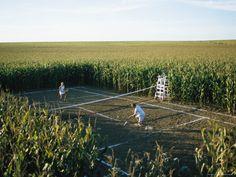 Tennis dans les champs