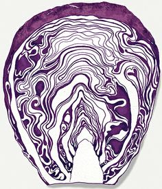 Food Illustration: Red Cabbage By Amanda Dilworth Art Photography Portrait, Digital Art Photography, Fruit Illustration, Food Illustrations, Art Sketches, Art Drawings, Pop Art Food, Vegetable Painting, Art Ideas For Teens