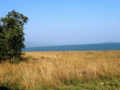 Debrigarh wildlife sanctuary near sambalpur hirakud dam odisha, more in the link