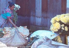 This travel photography essay depicts scenes from a flower market in Guatemala. See also: Woman Selling Flowers –Guatemala  Back to HOME PAGE Copyright© Edge of Humanity LLC 2015