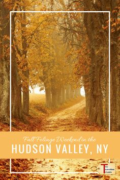 Tips on what to do (hiking, eating, & leaf peeping) so that you make the most out of your Hudson Valley Fall Foliage weekend. New York Travel, Mexico Travel, Travel Usa, Travel Tips, Budget Travel, Travel Ideas, Travel Inspiration, Adventure Activities, Us National Parks