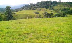 Venta Finca Guamal Meta  Cel. 3144204021 País - Colombia
