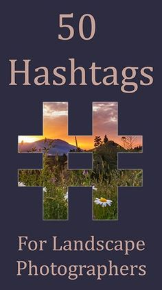 Since Instagram dumped the chronological feed last year, hashtagging your photos has never been more important. Photos that don't get a lot of engagement within a short period after being posted will drop further and…
