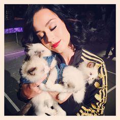 La twitpic de Katy Perry