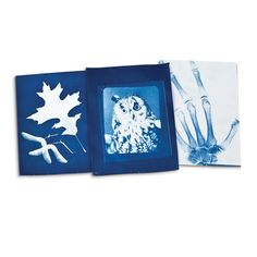 This printmaking kit produces blue-toned images through special paper, sunlight, and water.