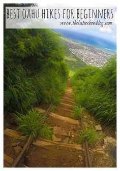 A guide to Oahu's best hikes for beginners.