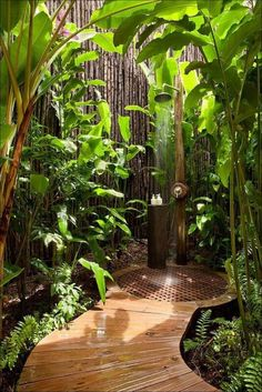 Ideas, Tropical Design Of Outdoor Shower Reinforce Natural Atmosphere Using Elegant Wooden Flooring Also Lots Of Outdoor Plants And Tree: St...