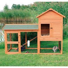 Casa coniglio domestico. - Поиск в Google