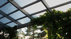 Slik velger du riktig tak til uteplassen - Byggmakker Pergola, Plants, Terrace, Plant, Arbors, Planting, Planets