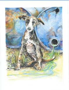 Australian artists we need you! This October Soi Dog celebrates it's 10th Year Anniversary. Soi Dog Australia is planning to run an on line Art Auction. If you are an artist and would be willing to donate a piece of artwork, please email debbie@soidog.org. This stunning art work is one amongst a number of original art works that will sold.